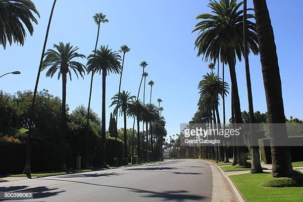 Beverly Hills Boulevard