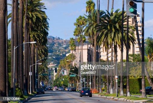 Beverly Hills Residential Scene