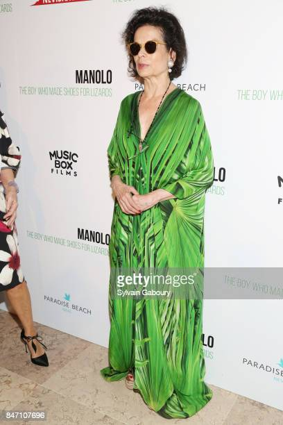 Bianca Jagger attends the premiere of 'Manolo The Boy Who Made Shoes for Lizards' hosted by Manolo Blahnik with The Cinema Society on September 14...