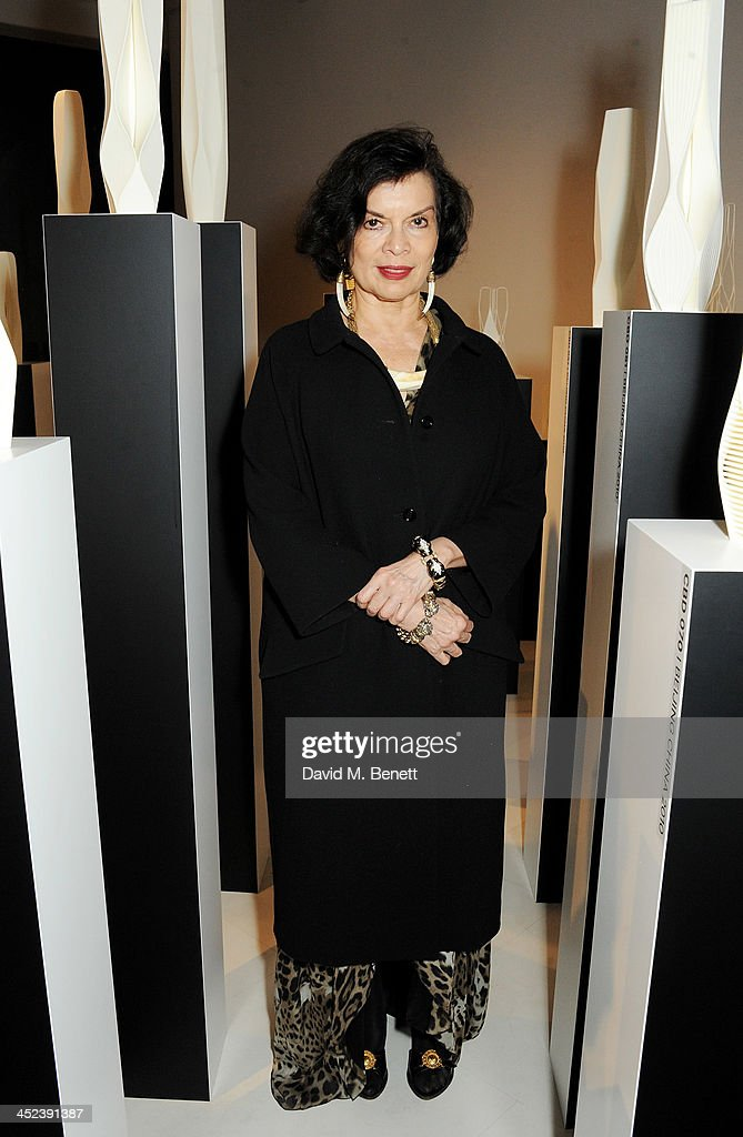 Bianca Jagger attends the Zaha Hadid for Caspita pop-up store launch event on November 28, 2013 in London, England.