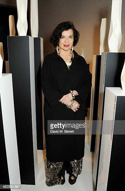 Bianca Jagger attends the Zaha Hadid for Caspita popup store launch event on November 28 2013 in London England