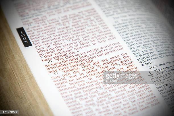 Biblia Scripture