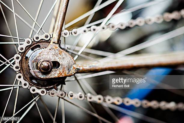Bicycle chain and spokes