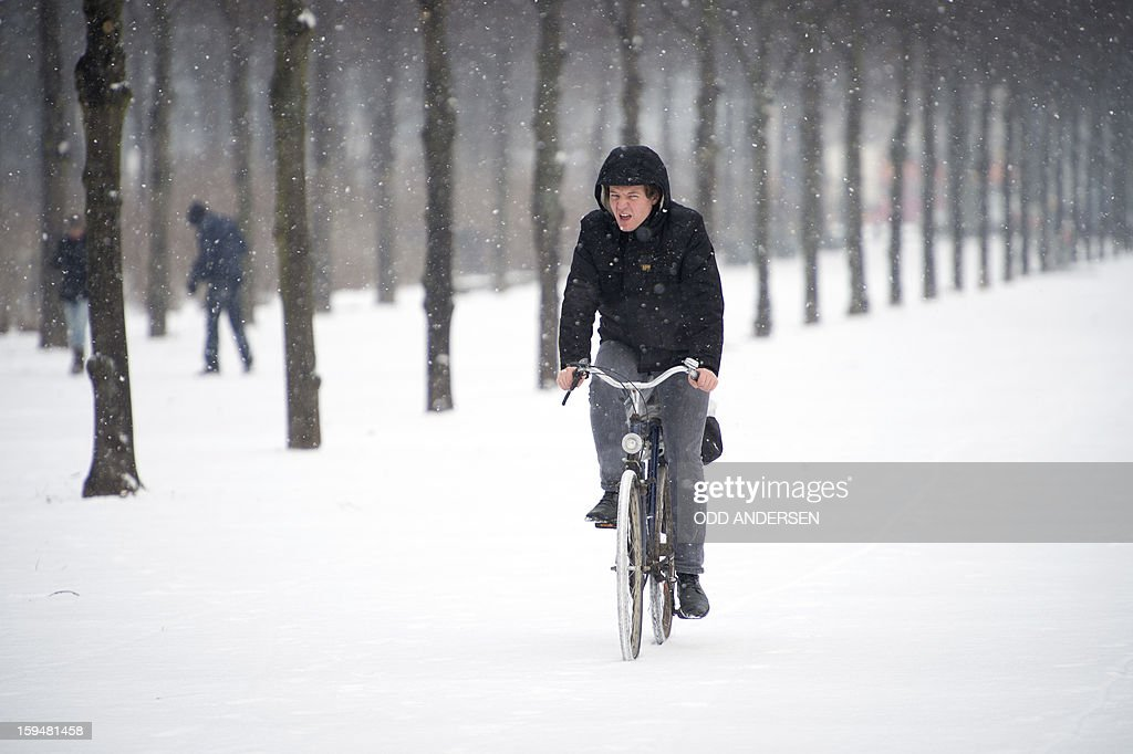 A bicycle commuter makes his way through Tiergarten park in Berlin on January 14, 2013. Temperature dropped over night and snow followed at daybreak in the German capital.