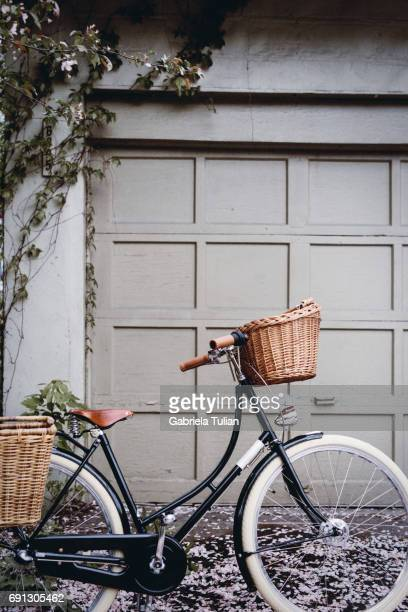 Bicycle outside the home with spring flowers