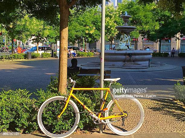Bicycle Parked Against Tree At Street
