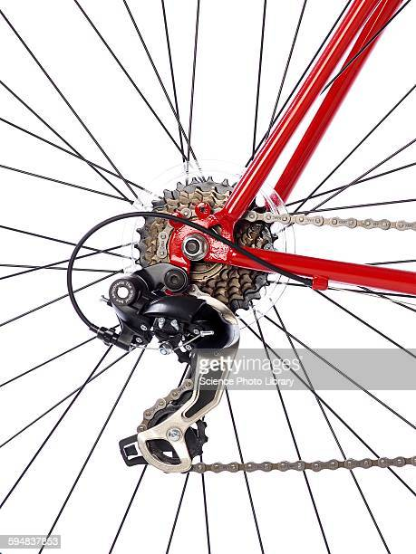 Bicycle rear gears