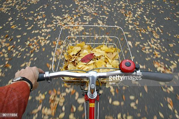 Bicycle ride with a baskest full of leafs