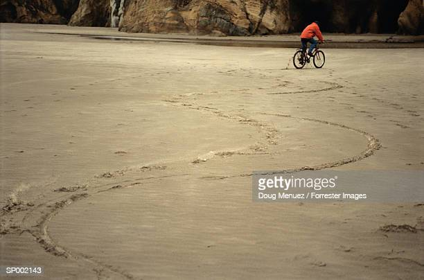 Bicycle Tracks