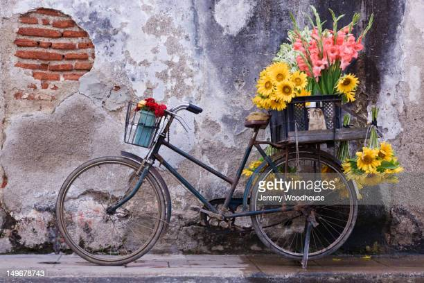 Bicycle with flowers in basket