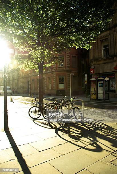 Bicycles Parked In Front Of Building By Tree On Sunny Day