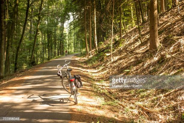 Bicycles Riding Bicycle On Road In Forest