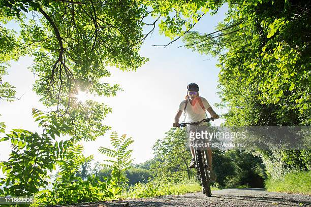 Bicyclist ascends forest road in spring, sunrise