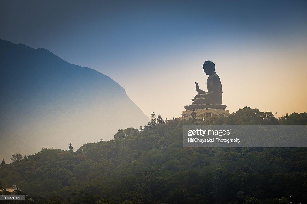 Bid Buddha, Hong Kong