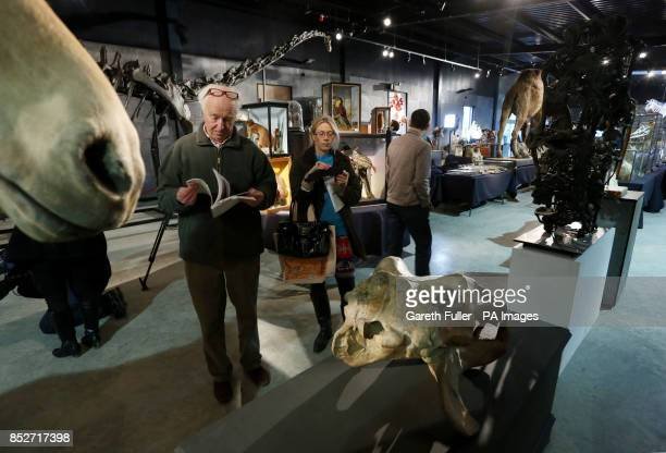Bidders walk amongst items for auction at Summers Place Auctions in West Sussex during an Evolution sale which featured a 17 metre long specimen of a...