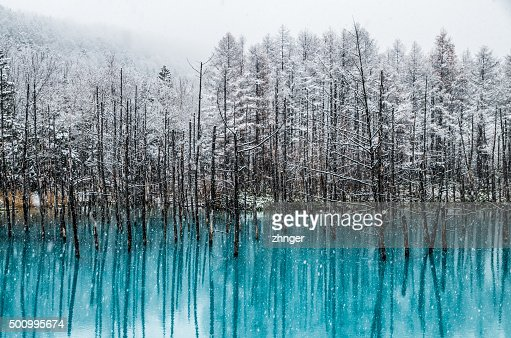 Biei Blue Pond : Stock Photo