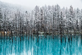 Winter time at the famous Biei Blue Pond.