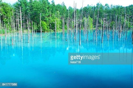 Biei's Blue Pond : Stock Photo