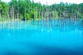 Biei's Blue Pond