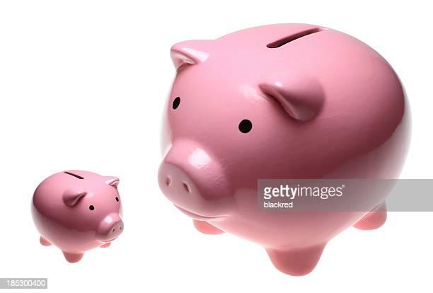 Porcellino salvadanaio banche piccole e grandi