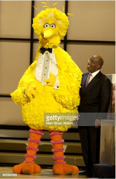 Big Bird and Al Roker perform during a tribute to 'Sesame Street' during The 31st Annual Daytime Emmy Awards