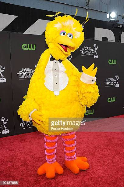 Big Bird arrives at the 36th Annual Daytime Entertainment Emmy Awards at The Orpheum Theatre on August 30 2009 in Los Angeles California