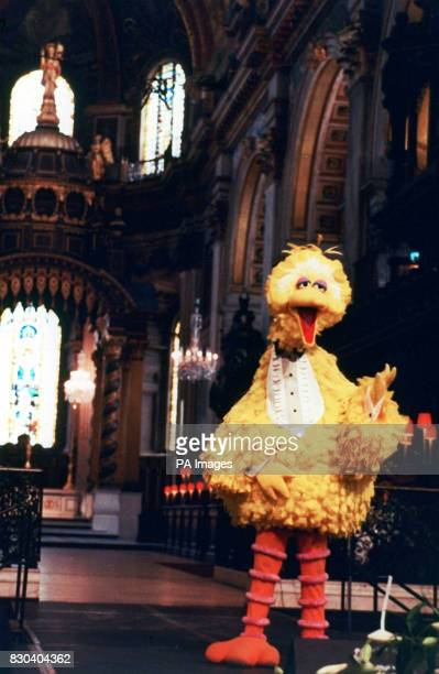 Big Bird from Sesame Street sings Jim Henson's favourite song 'It's Not Easy Being Green' at the memorial service held t St Pauls Cathedral to...