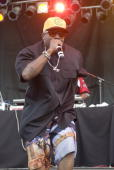 Big Boi performs during the third and final day of Pitchfork Music Festival at Union Park on July 18 2010 in Chicago Illinois