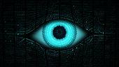 High-tech computer global surveillance