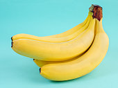 big bunch of ripe yellow bananas on bright blue background
