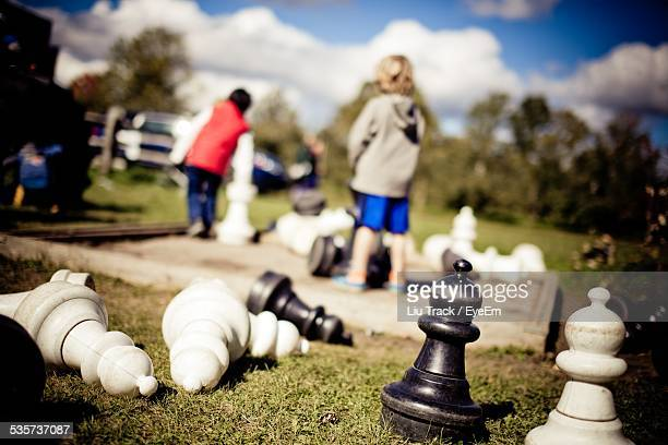 Big Chess Pawns In Park