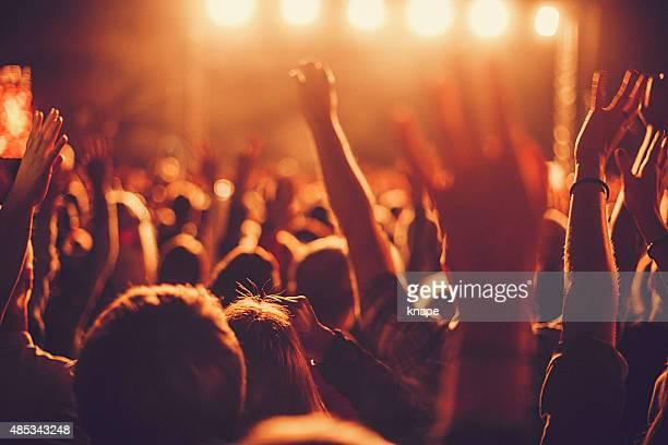 Big concert public en écoutant de la musique au festival