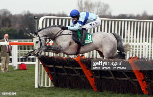 Big Eared Fran ridden by Andrew McNamara wins The European Breeders' Fund Paddy Power 'National Hunt' Novices' Handicap Hurdle Final during the Paddy...