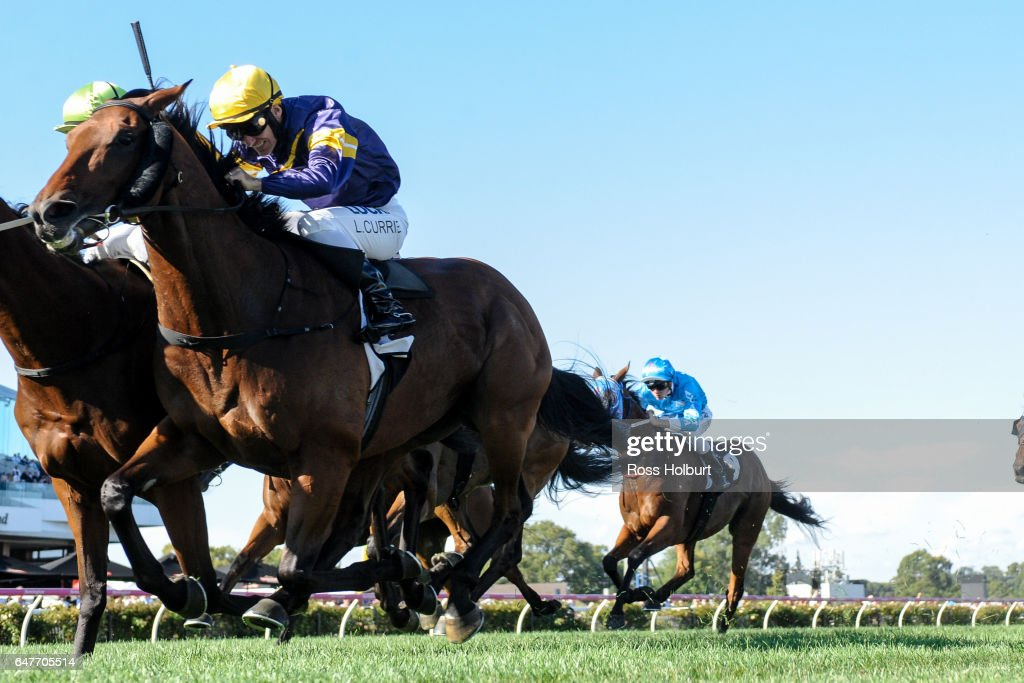 Big Memory (FR) ridden by Luke Currie wins the 3AW Roy Higgins Quality at Flemington Racecourse on March 04, 2017 in Flemington, Australia.