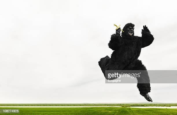 Big monkey running in a meadow