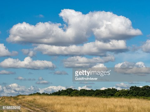 Big sky open parkland, countryside with great clouds. : Stock Photo