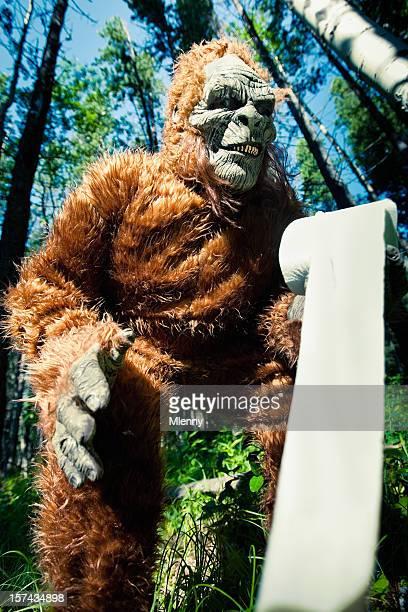 Bigfoot dans la forêt.