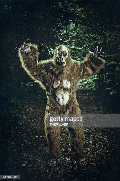 bigfoot fait une apparition sur une route Sale