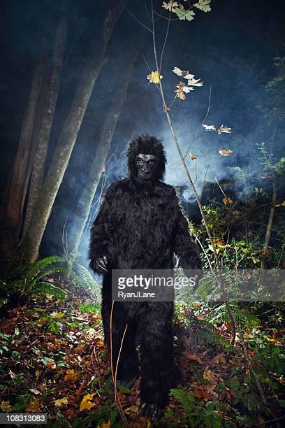 Bigfoot or Wild Gorilla In Dark Woods
