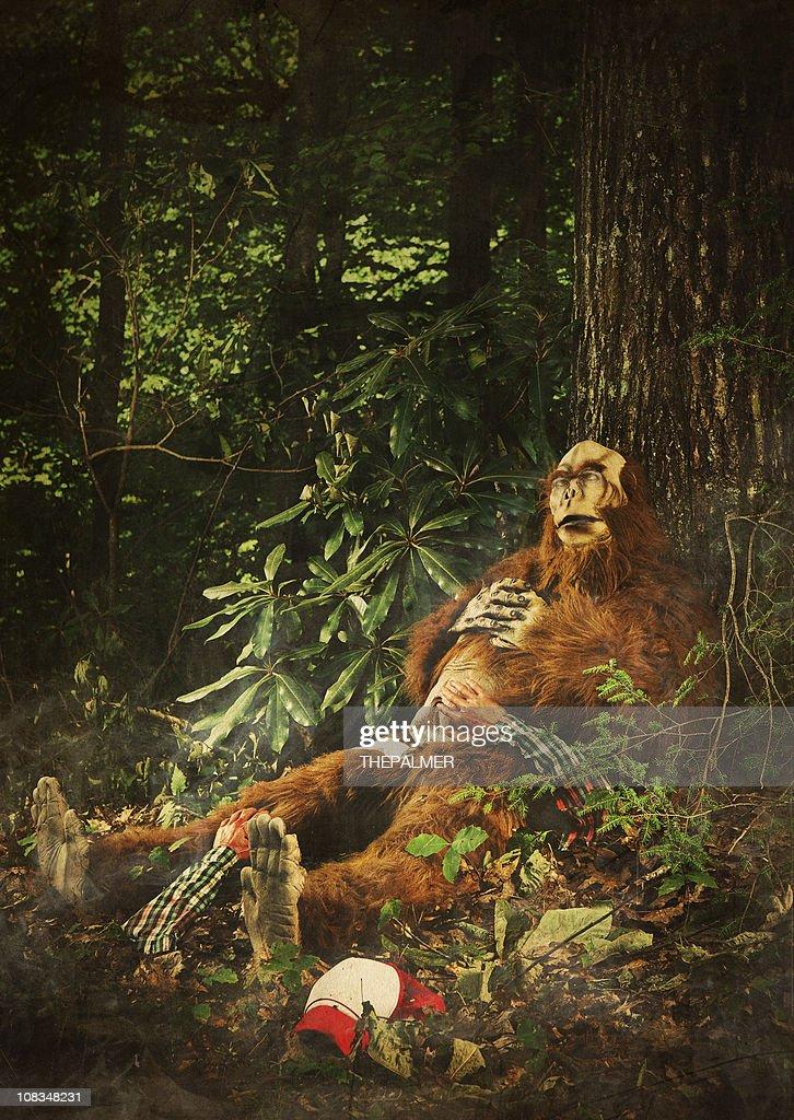 bigfoot sleeping after eating a human