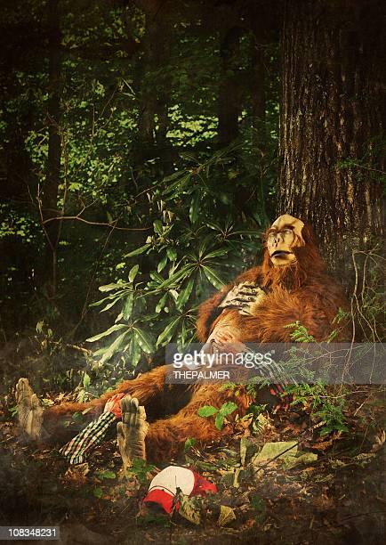 bigfoot dormir après manger l'homme