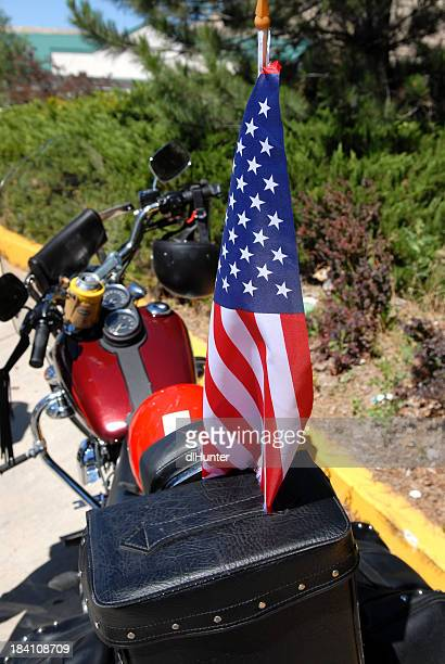 Bike Flag Bearer