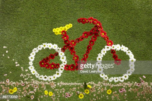 A bike made out of flowers set on grass : Stock Photo