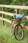 Bike with basket of flowers