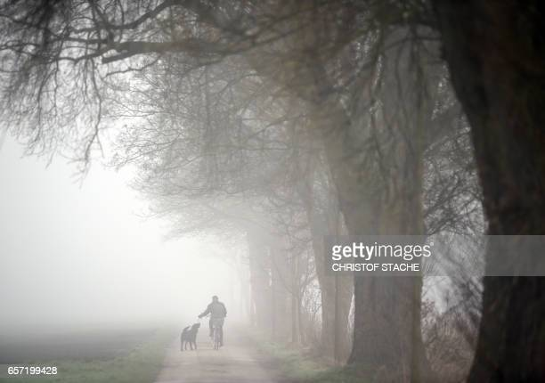 A biker and his dog pass a country road during a foggy weather morning with temperatures by 6 degrees near the small village Groebenzell near Munich...