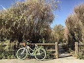 Bikes on path