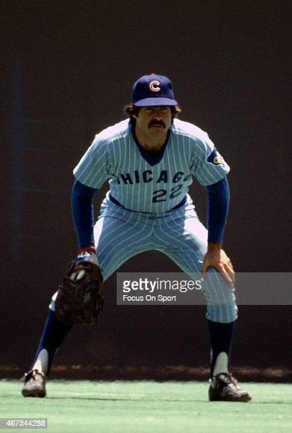 Bill Buckner of the Chicago Cubs looks in at the batter during an Major League Baseball game circa 1980 Buckner played for the Cubs from 197784
