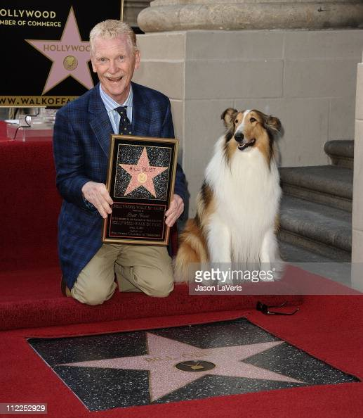Bill Geist and Lassie attend Geist's induction into the Hollywood Walk of Fame on April 15 2011 in Hollywood California