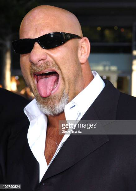 Bill Goldberg during 'The Longest Yard' Los Angeles Premiere Arrivals at Grauman's Chinese Theatre in Hollywood California United States