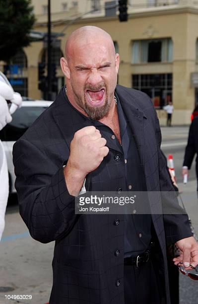 Bill Goldberg during World Premiere of 'Looney Tunes Back In Action' at Grauman's Chinese Theatre in Hollywood California United States